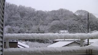 元旦の冬景色