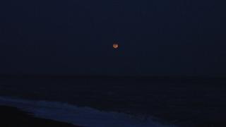 月出帯食1