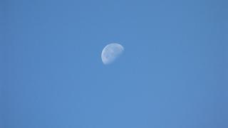 台風19号が去った後の月