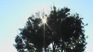 冬至の日の太陽
