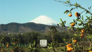 冬至の日の富士山